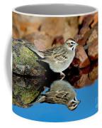 Lark Sparrow Chondestes Grammacus Coffee Mug