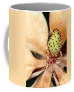 Last Days Of A Magnolia Coffee Mug