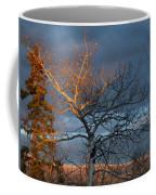 Last Light Last Leaves Coffee Mug