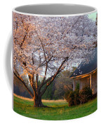 Last Light Of Day In Early Spring Coffee Mug