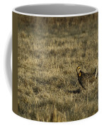 Last Prairie Chicken On The Booming Grounds  Coffee Mug by Thomas Young