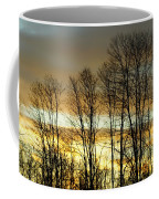 Last Rays Of Light Coffee Mug
