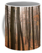 Late Autumn Beech Coffee Mug