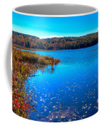 Late Autumn On Loon Lake Coffee Mug