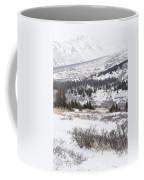 Late Winter Storm Coffee Mug