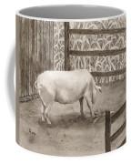 Latin Coffee Mug