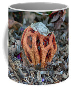 Latticed Stinkhorn Coffee Mug