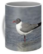 Laughing Gull Coffee Mug