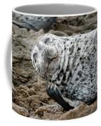 Laughing Seal Coffee Mug