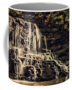 Laurel Run Falls Coffee Mug