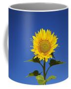 Laval, Quebec, Canada Sunflower Coffee Mug