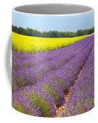 Lavender And Mustard Coffee Mug