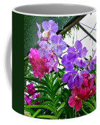 Lavender And Red Orchids At Maerim Orchid Farm In Chiang Mai-tha Coffee Mug