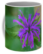 Lavender Bloom Coffee Mug