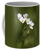 Lavender Blush Cuckoo Flower Coffee Mug