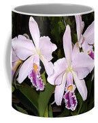 Lavender Cattleya Orchids Coffee Mug