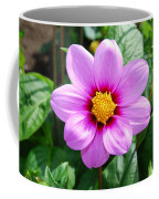 Lavender Flower Coffee Mug