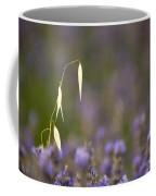 Lavender, France Coffee Mug