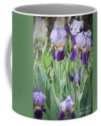 Lavender Iris Group Coffee Mug