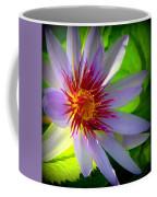 Lavender Passion Coffee Mug