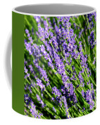Lavender Square Coffee Mug