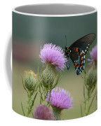 Lavender Thistle And Pipevine Swallowtail Butterfly Coffee Mug