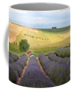 Lavender Valley Coffee Mug by Carol Groenen