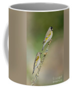 Lawrence Goldfinch Pair On Branch Coffee Mug