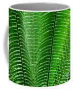 Layered Ferns I Coffee Mug