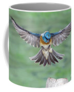 Lazuli Bunting In Flight Coffee Mug
