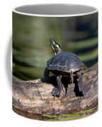 Lazy Day On A Log 6241 Coffee Mug