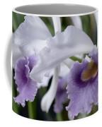 Lc Beechview Coffee Mug