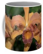 Lc. Roy Mcmillan  9865 Coffee Mug