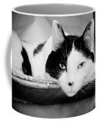 Le Cat Coffee Mug