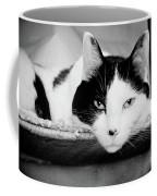 Le Cat Coffee Mug