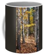 Leading To Autumn Coffee Mug