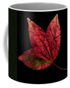 Leaf And Tree Coffee Mug