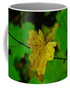 Leaf Caught On A Branch Coffee Mug