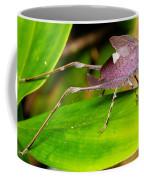 Leaf Katydid Coffee Mug