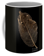 Leaf Lace Coffee Mug by Anne Gilbert