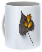 Leaf Study Coffee Mug