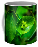 Leaf With Seeds Coffee Mug