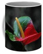 Leafs 1 Coffee Mug