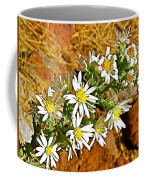 Leafy-bract Asters In Wildcat Canyon Trail Along Kolob Terrace Road In Zion National Park-utah Coffee Mug