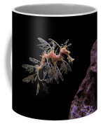 Leafy Sea Dragon Coffee Mug by Jonathan Sabin