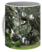 Leaning Live Oak Coffee Mug