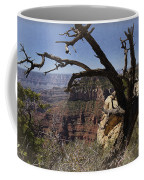 Leaning On The Everlasting Arms Coffee Mug