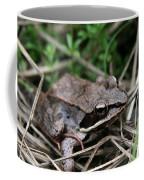 Wood Frog  Coffee Mug