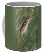 Least Bittern Coffee Mug