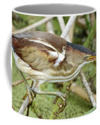 Least Bittern Female Feeding Coffee Mug